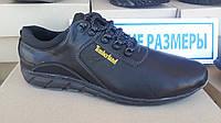 Кожаные кроссовки Timberland большие размеры 46-50р. Украина