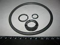 Ремкомплект запора заднего борта автомобиля-самосвала (производство Россия) (арт. 503А-8505310)