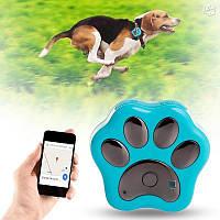GPS Трекер для собак и кошек  RF-v30 - Вы можете не переживать за своего питомца!