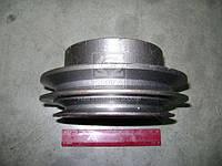 Шкив помпы водяной 2-х ручьевый Д65-1307016
