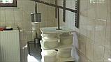 Пресс для сыра (настенный), фото 2