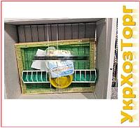 Брудер + инкубатор с автоматическим переворотом Курочка Ряба-80 тэновый, цифровой (Корпус брудера)