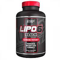 Lipo 6 Black Hers Extreme Potency, 120 Caps