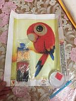 Діамантова вишивка 5D Попугай алмазная мозаика мозаїка вышивка картина картинка папуга попугайчик