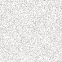 Стельова плита AMF Orbit Ecomin 600*600*13 мм