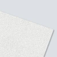 Стельова плита AMF Thermatex Aquatec 600*600*19 мм