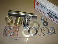 Шкворень в комплекте (комплект на одну сторону) КАМАЗ 6520 и модификации (подшипник ДК) , AEHZX