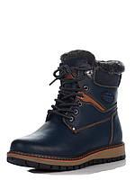 Ботинки Paliament 39(р) Синий D5612-1