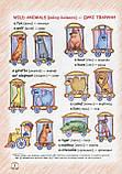 Easy English Starter Book (+ CD-ROM). Жирова Тетяна, Федієнко Василь, фото 7
