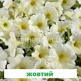 Петунія мультіфлора Селебреті F1 (колір на вибір) 500 шт., фото 6