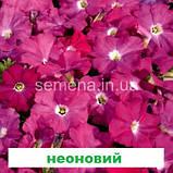 Петунія мультіфлора Селебреті F1 (колір на вибір) 500 шт., фото 7