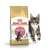 Royal Canin Maine Coon Kitten 2кг- корм для кошек породы мейн кун