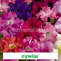 Петунія грандіфлора Аладдін F1 (Колір на вибір) 500 шт., фото 1