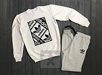 Мужской спортивный костюм Adidas белый с серым