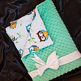 Плед для новонародженого на виписку. Ковдра в коляску, фото 3