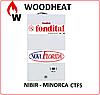 Котел газовый Fondital VICTORIA CTFS 24  кВт 2-контурний  турбо