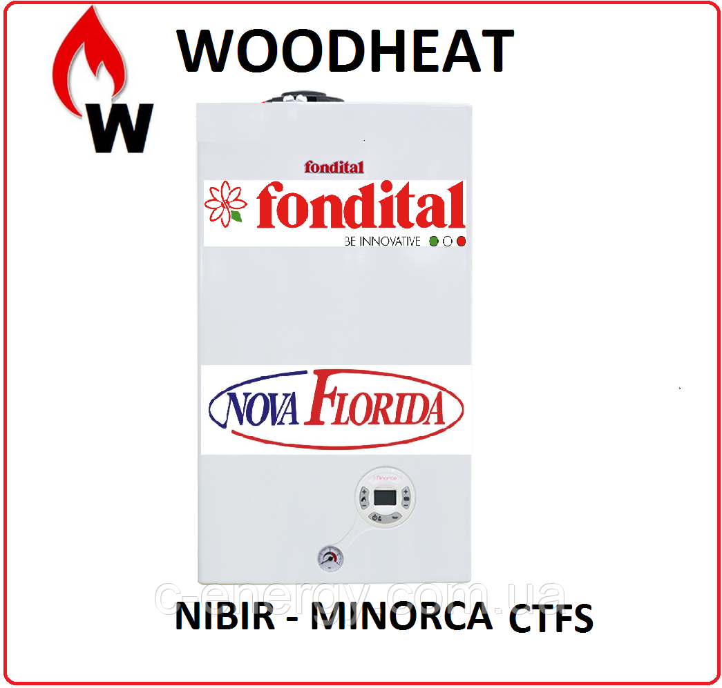 Котел газовый Fondital VICTORIA CTFS 24  кВт 2-контурний  турбо, фото 1