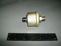 Датчик давления воздуха МТЗ (10 атм.) (производство ОАО Экран) (арт. ДД-10-01Е), ADHZX