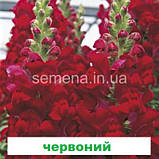 Антіррінум Увертюра F1 (колір на вибір) 100 шт. (II група), фото 5
