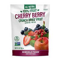 Сrunch dried fruit (лесные ягоды)