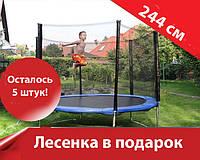 Батут для детей и всей семьи 244см (лесенка в подарок) Киев