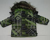 Куртка в клеточку  для мальчика зимняя (QuadriFoglio, Польша)
