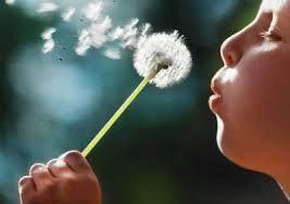 Чистота дыхания