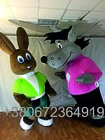 Надувной костюм Зайца и Волка