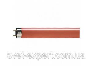 OSRAM L 18W/60 красная люм. лампа, фото 2