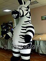 Надувной костюм зебры