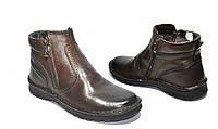 Мужские ботинки зимние кожаные Польша 1012 коричневые