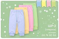 Детские трикотажные штаны. ШР 2.