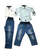 Комплект-двойка для мальчика, F&D, размеры 1-5 лет, арт. 5381