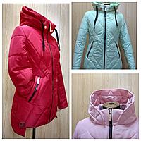 Куртка женская деми на синтепоне (44-56), доставка по Украине