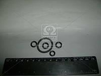 Ремкомплект датчика блокировки дифференциала 70-4801010 с арматурой (производство Украина) (арт. Р/К-1924)