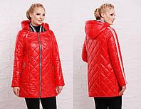 Куртка в больших размерах из стеганной плащевки на молнии 202155
