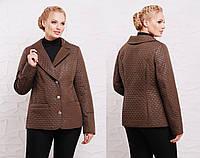 Женская демисезонная куртка жакет в больших размерах с карманами 202963