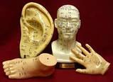 Модель руки муляж кисти 13 см наглядное пособие рефлексотерапевта, фото 2