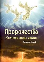 Пророчества. Сценарий конца времен. Иеромонах Елпидий