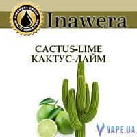 Ароматизатор Inawera Cactus-Lime (Кактус-Лайм)