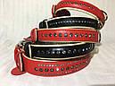 Ошейник кожа 21-27 см 15 мм стразы Brilliance Collar черный для собак, фото 4