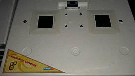 Автоматический бытовой инкубатор Курочка Ряба 63 яйца с автоматическим переключением 220/12 V