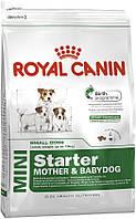 Royal Canin Mini Starter 1кг - корм для щенков до 2 месяцев, беременные и кормящие суки маленьких размеров