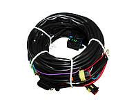 Проводка электроники Stag 4 Plus