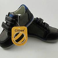 Туфли-кросовки фирмы Clibee