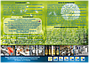 CLEANSAVE®:Моющее средство  для пищевой промышленности (Концентрат 1:5), фото 5