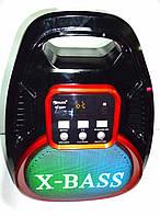 Портативная система GOLON RX-820BT (колонка, микрофон, караоке ), фото 1