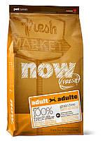 Сухой беззерновой корм «Now! С индейкой, уткой, и овощами» (для взрослых собак всех пород) 5,45кг