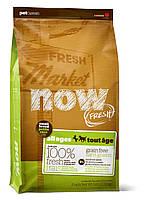 Сухой беззерновой корм «Now! С индейкой, уткой и овощами» (для малых пород собак всех возрастов) 2,72кг