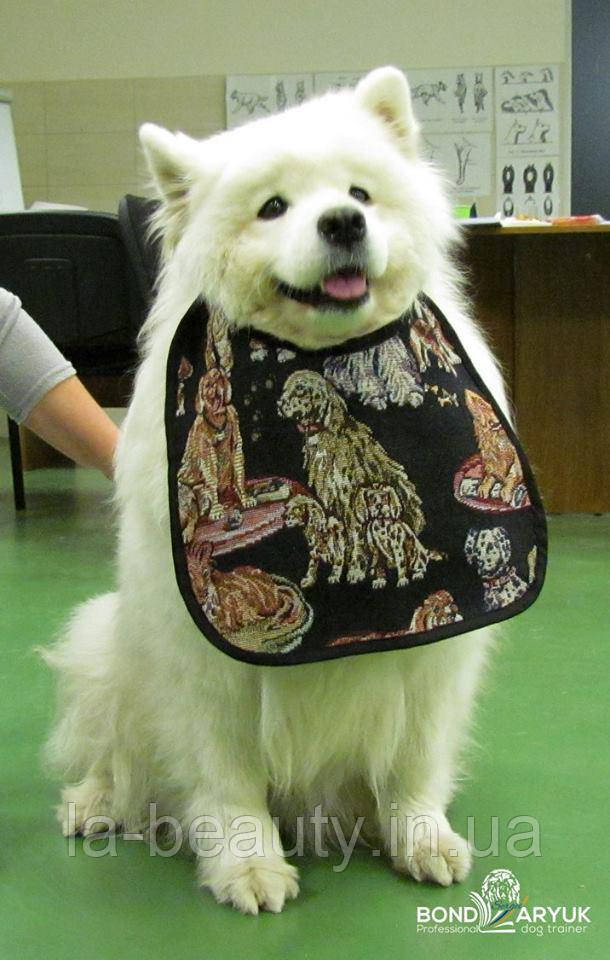 Нагрудник / слюнявчик для собаки 4Paws Medium